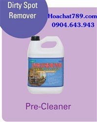 Dirty Spot Remover Pre-Cleaner