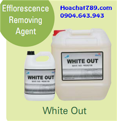 Efflorescence Removing Agent White Out